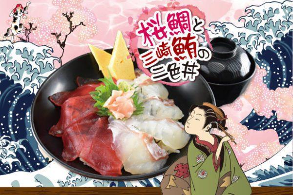 桜鯛と三崎鮪の二色丼