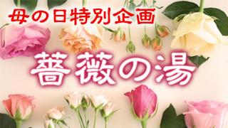 母の日・バラのお風呂
